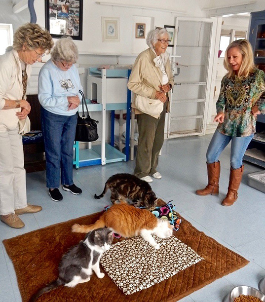 Pamela conducts a tour of the Blue Bell for members of the Laguna Woods Cat Club